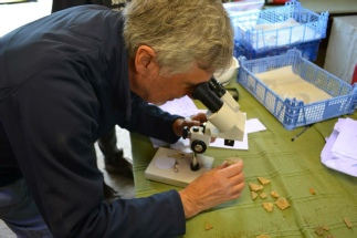 Archaeology Microscopes Sherwood Forest