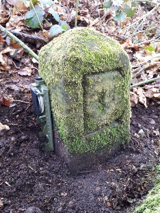 Edwinstowe Boundary Stone, Birklands Wood - Archaeology in Sherwood Forest