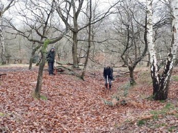 Medieval holloway, Birklands Wood - Archaeology in Sherwood Forest