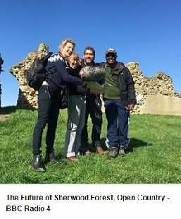 Andy Gaunt archaeology sherwood forest radio 4